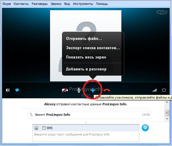как в скайпе включить видео img-1